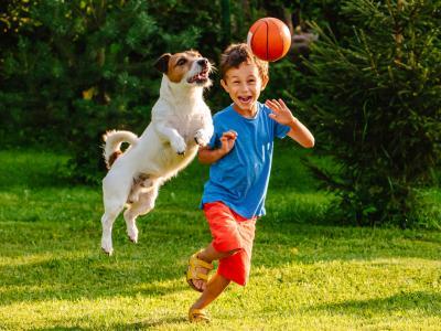 Çocukların Kaygı Ve Korkularına Yönelik Terapötik Müdahaleler - ONLİNE