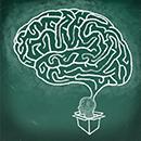 Yüksek Derecede Verimli Bir Beyin için 10 İpucu